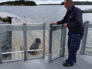 Lisa hund testar glasräcket