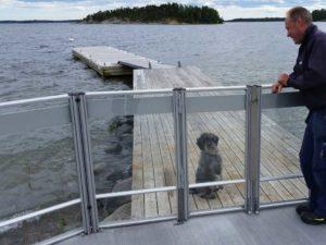 Glasräcke med Lisa hund
